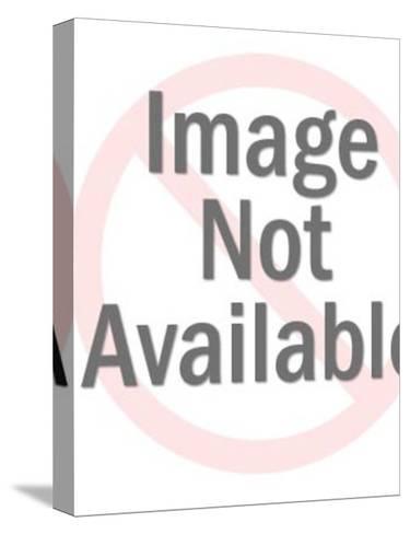 Baseball Player at Bat-Pop Ink - CSA Images-Stretched Canvas Print
