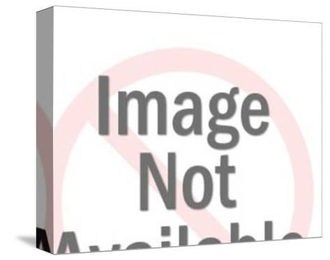 Man Holding Big Sign-Pop Ink - CSA Images-Stretched Canvas Print