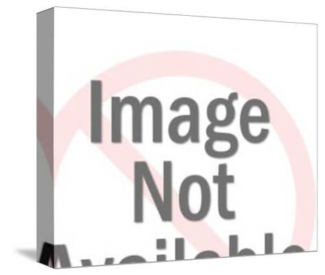 Panting Dalmatian-Pop Ink - CSA Images-Stretched Canvas Print