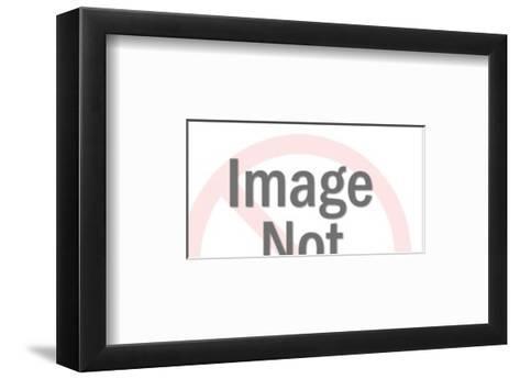 Dove Holding Letter-Pop Ink - CSA Images-Framed Art Print