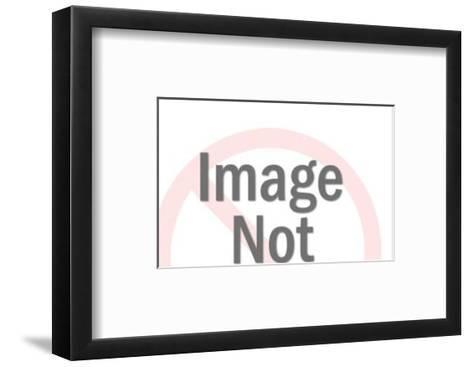 Pliers-Pop Ink - CSA Images-Framed Art Print