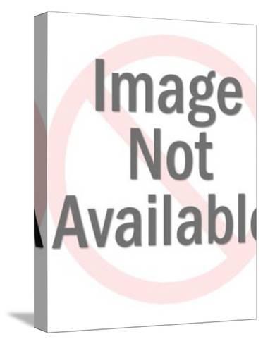 General on Horseback-Pop Ink - CSA Images-Stretched Canvas Print