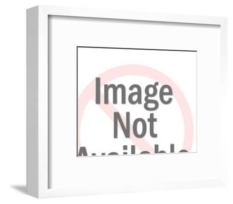 Stylized Owl-Pop Ink - CSA Images-Framed Art Print