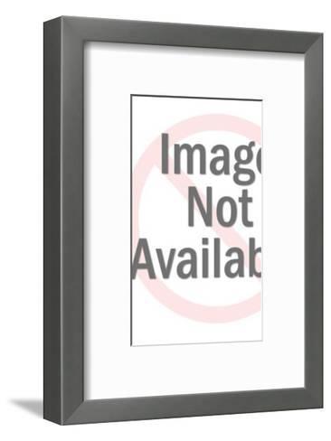 Light and Dark Owl-Pop Ink - CSA Images-Framed Art Print