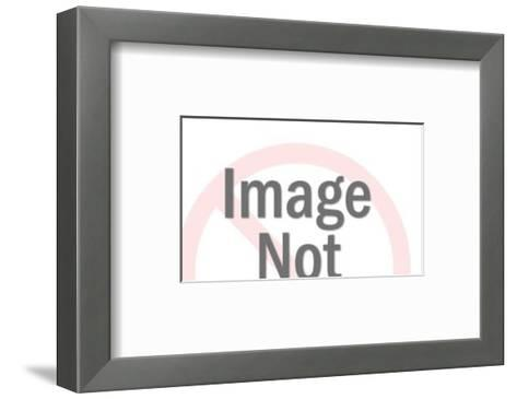 Men in Various Costumes-Pop Ink - CSA Images-Framed Art Print