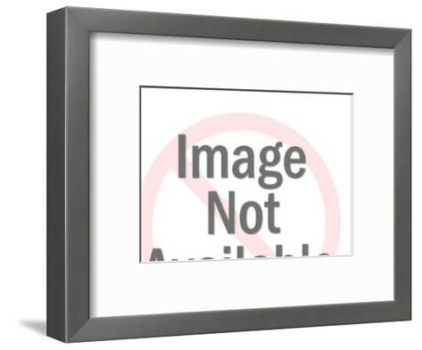 Donkey Pulling Cart-Pop Ink - CSA Images-Framed Art Print