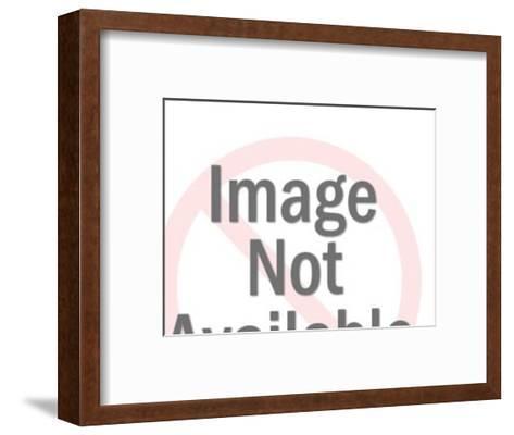 Dog House-Pop Ink - CSA Images-Framed Art Print