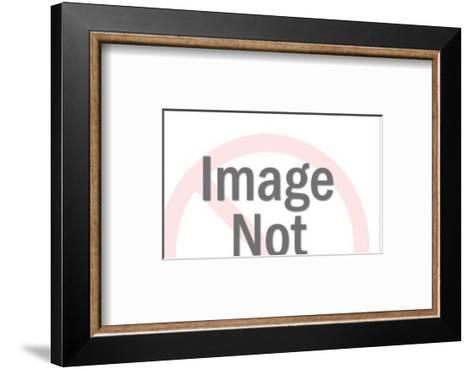 Pheasant-Pop Ink - CSA Images-Framed Art Print