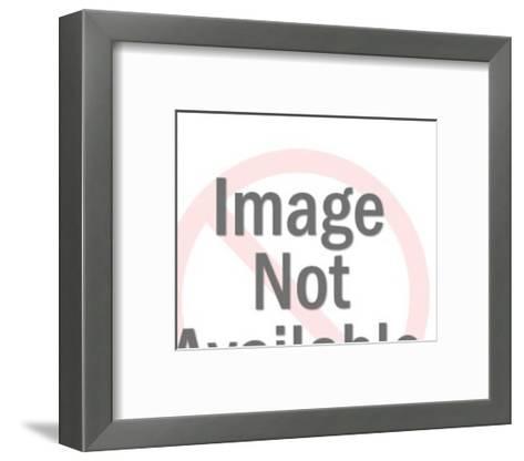 USA and Globe-Pop Ink - CSA Images-Framed Art Print