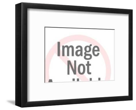 Cowboy Lassos Cow-Pop Ink - CSA Images-Framed Art Print