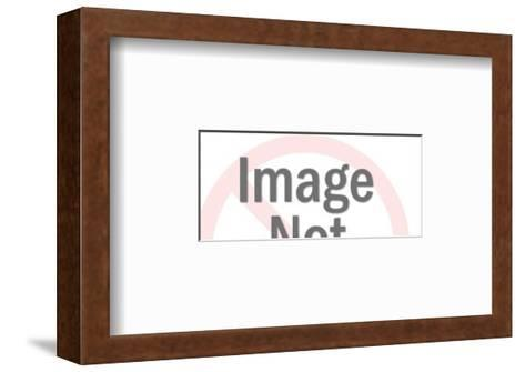 Dolphin-Pop Ink - CSA Images-Framed Art Print