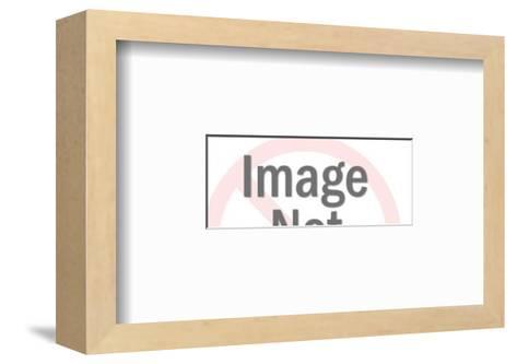 Various Rooflines-Pop Ink - CSA Images-Framed Art Print
