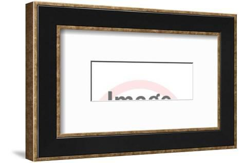 Dachshund-Pop Ink - CSA Images-Framed Art Print