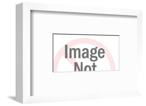 Silhouette Forest Scene-Pop Ink - CSA Images-Framed Art Print