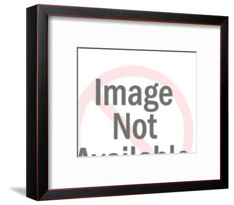 Oval Globe-Pop Ink - CSA Images-Framed Art Print