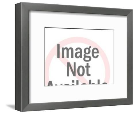 Stork Carrying Baby-Pop Ink - CSA Images-Framed Art Print
