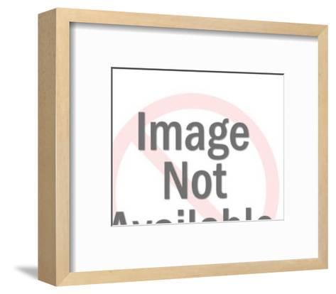 Laboratory Beakers-Pop Ink - CSA Images-Framed Art Print