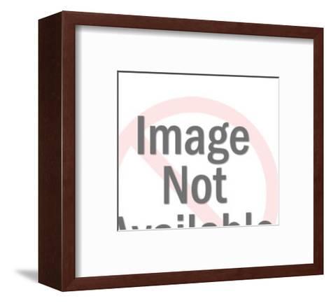 American Flag Eagle-Pop Ink - CSA Images-Framed Art Print