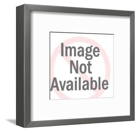 Eagle on Top of House-Pop Ink - CSA Images-Framed Art Print