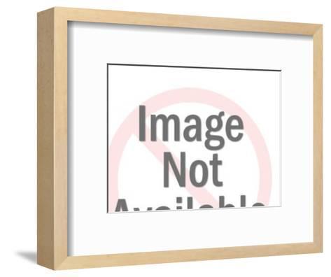 Eagle With Banner-Pop Ink - CSA Images-Framed Art Print