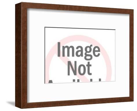 Steer With Big Horns-Pop Ink - CSA Images-Framed Art Print