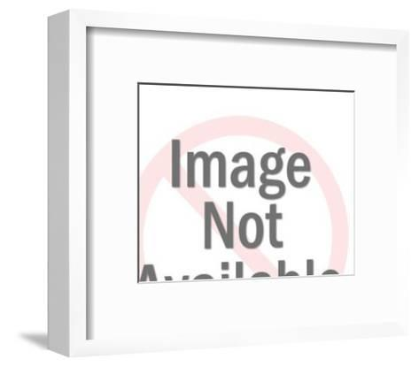 Buffalo-Pop Ink - CSA Images-Framed Art Print