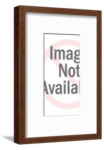 Boy Wearing Glasses-Pop Ink - CSA Images-Framed Art Print