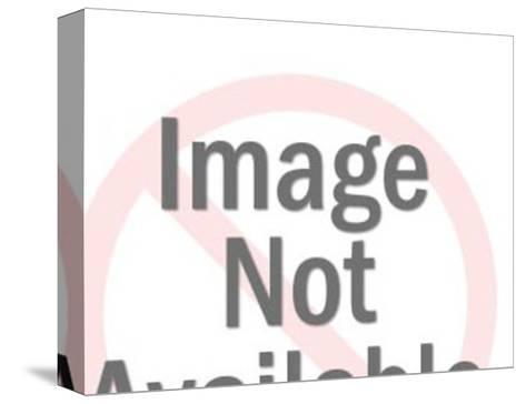 Rampant Lion Crest-Pop Ink - CSA Images-Stretched Canvas Print