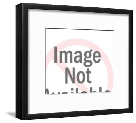 Blackbird Perched on a Branch-Pop Ink - CSA Images-Framed Art Print
