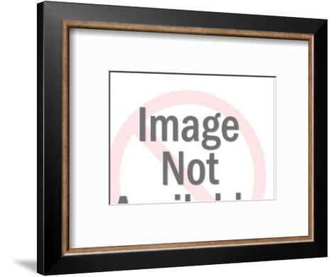 Jumping Dolphin-Pop Ink - CSA Images-Framed Art Print