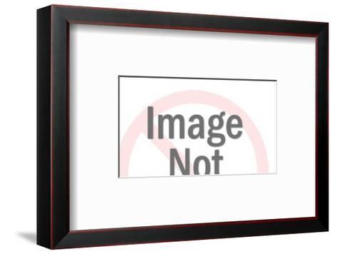 Butcher Chart of a Pig-Pop Ink - CSA Images-Framed Art Print