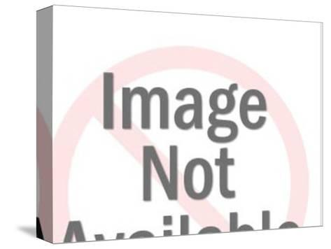 Close up of Dark Haired Woman Looking Sideways-Pop Ink - CSA Images-Stretched Canvas Print