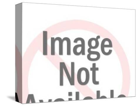 Close up of Couple Embracing-Pop Ink - CSA Images-Stretched Canvas Print