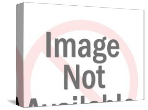 Man and Woman Kissing-Pop Ink - CSA Images-Stretched Canvas Print