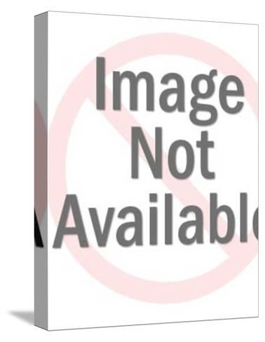 Paint Splatter-Pop Ink - CSA Images-Stretched Canvas Print