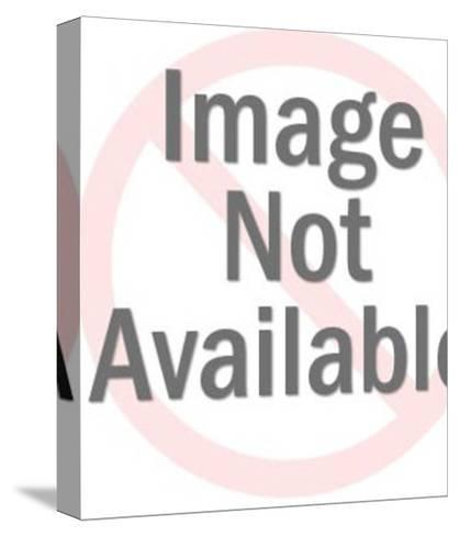 R.I.P.-Pop Ink - CSA Images-Stretched Canvas Print