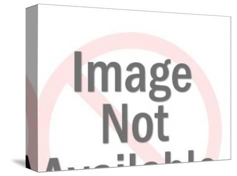 Bikini-Pop Ink - CSA Images-Stretched Canvas Print