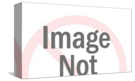 uniform-Pop Ink - CSA Images-Stretched Canvas Print