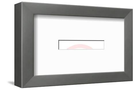 Hardwood Floors-Pop Ink - CSA Images-Framed Art Print