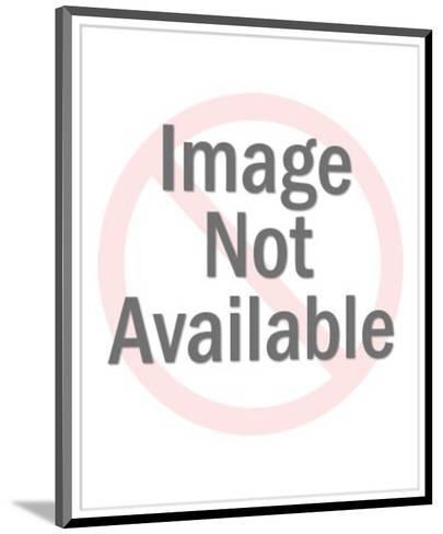 Hardwood Floors-Pop Ink - CSA Images-Mounted Art Print