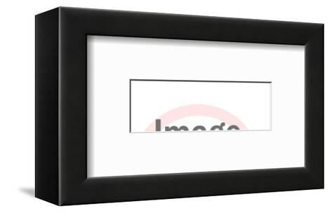 Sea-Pop Ink - CSA Images-Framed Art Print