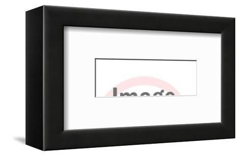 Bones-Pop Ink - CSA Images-Framed Art Print