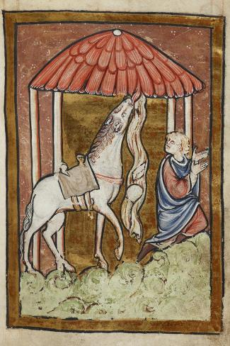 St. Cuthbert's Horse Pulls Down Bread and Meat-Bede-Stretched Canvas Print