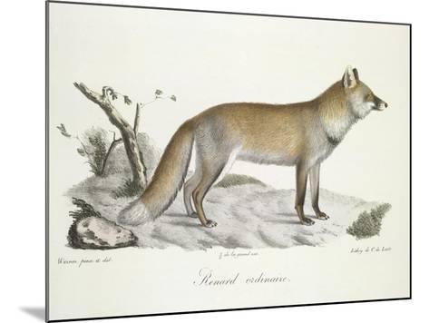 A Fox-Werner-Mounted Giclee Print
