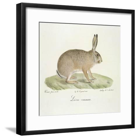 A Common Hare-Werner-Framed Art Print