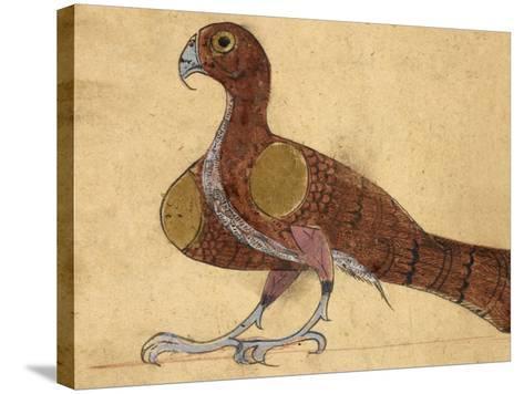 Eagle-Aristotle ibn Bakhtishu-Stretched Canvas Print