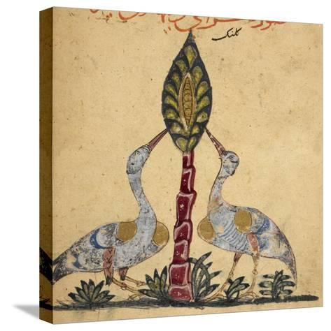 Two Cranes-Aristotle ibn Bakhtishu-Stretched Canvas Print