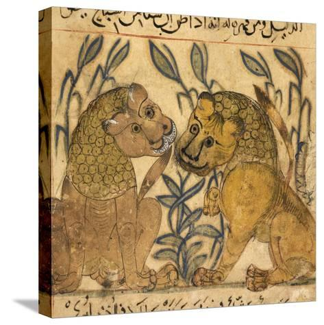 Two Lions-Aristotle ibn Bakhtishu-Stretched Canvas Print