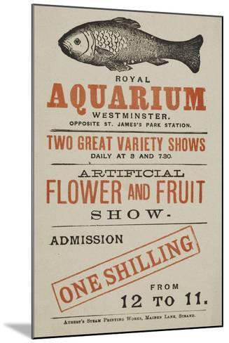 Royal Aquarium, Westminster ... Two Great Variety Shows Daily ... Artificial Flower and Fruit Show--Mounted Giclee Print