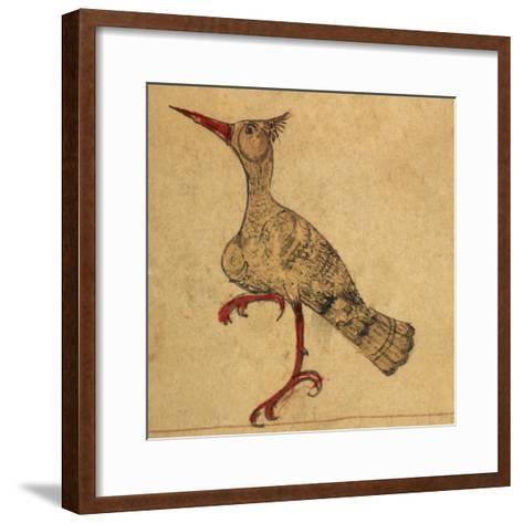 Hoopoe-Aristotle ibn Bakhtishu-Framed Art Print